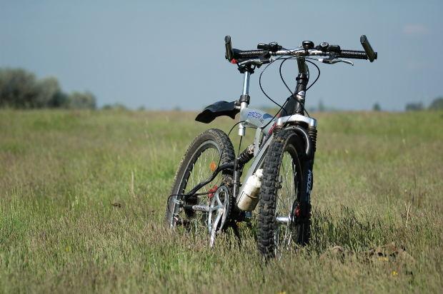 טיול אופניים בטבע. צילום: morguefile