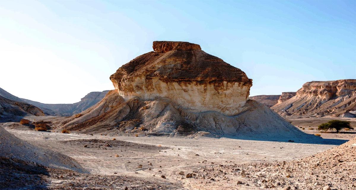 טיול בישראל בחורף: שביל הפטריות - הערבה התיכונה
