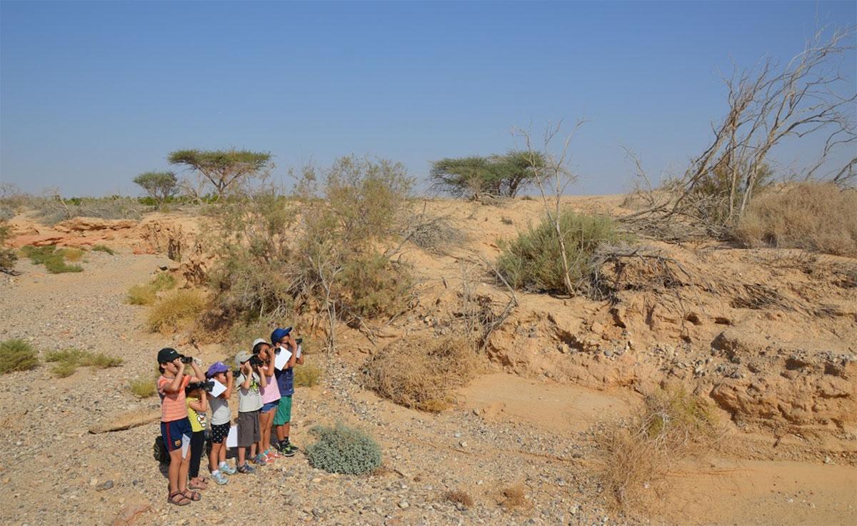 ילדי הערבה מסיירים בשמורת שיזף ומחפשים אחר זנבנים- צילום- דורית אביהר